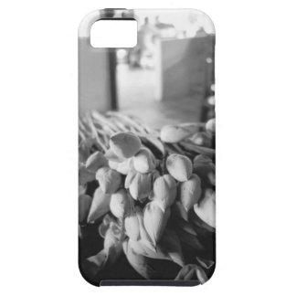 Siem Reap Cambodia, Lotus Flowers iPhone 5 Cover