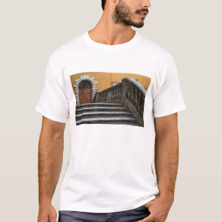 Sienna, Tuscany, Italy - Low angle view of T-Shirt