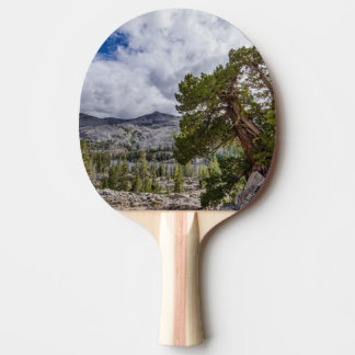 Sierra Juniper and Evergreen Trees Ping Pong Paddle