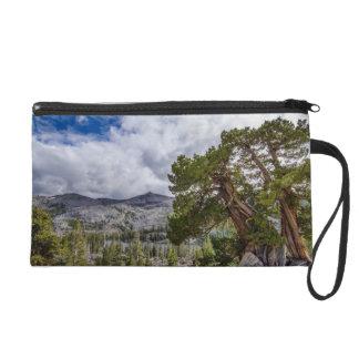 Sierra Juniper and Evergreen Trees Wristlet