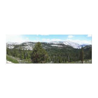 Sierra Nevada Mountains II Canvas Print
