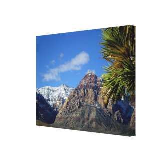 Sierra Nevada Mountains with snow Stretched Canvas Print