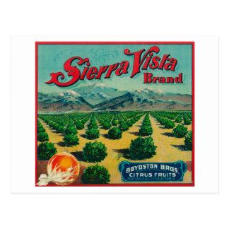 Sierra Vista Brand Citrus Crate Label Postcard