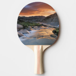 Sierra Wave over Yosemite Ping Pong Paddle