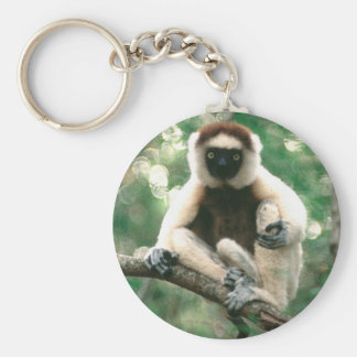 Sifaka Key Fob Basic Round Button Key Ring