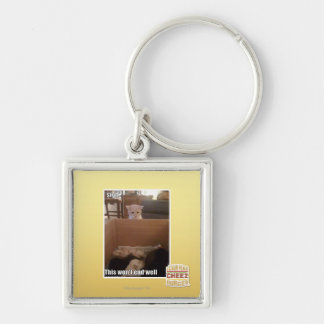 sigh Silver-Colored square key ring