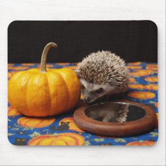 Sights of the Season Mouse Pad