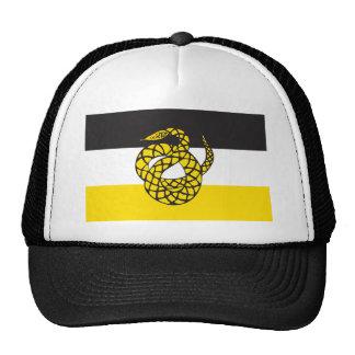 Sigma Nu Flag Cap