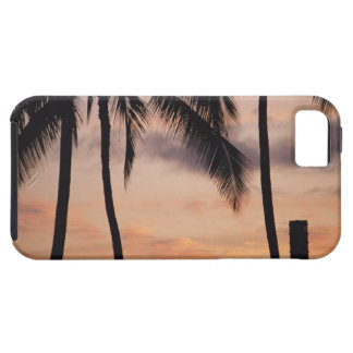 Signal and Palm Tree iPhone 5 Cases