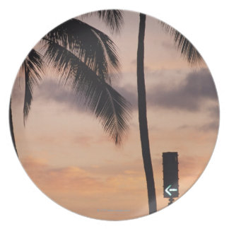 Signal and Palm Tree Plate
