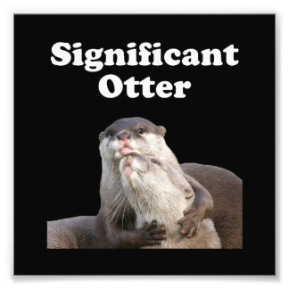 Significant Otter Photograph
