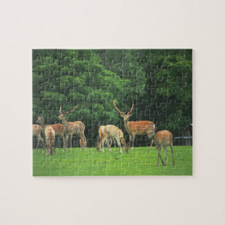 Sika deer standing in a clearing jigsaw puzzle