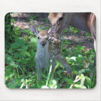 Sika fawn and mother mouse pad