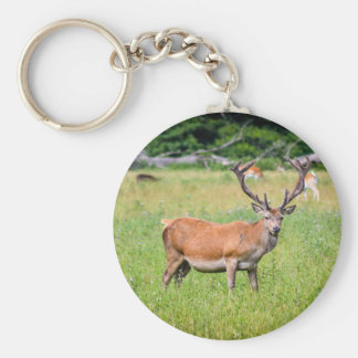 Silent Stag Basic Round Button Key Ring