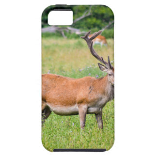 Silent Stag Case For The iPhone 5