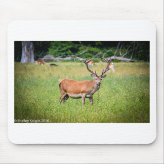 Silent Stag Mouse Pad