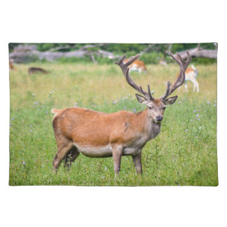 Silent Stag Placemat