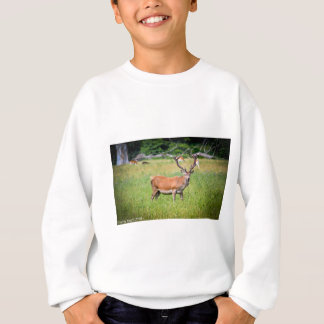 Silent Stag Sweatshirt