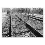 Silent Tracks 7x5 Black and White Photographic Pri Photograph