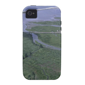 Siletz Bay National Park Vibe iPhone 4 Cases