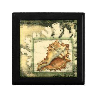 Silhouette Conch Shell Small Square Gift Box