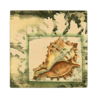 Silhouette Conch Shell Wood Coaster