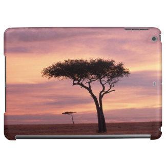 Silhouette image of acacia tree at sunrise