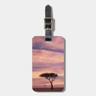 Silhouette image of acacia tree at sunrise bag tag