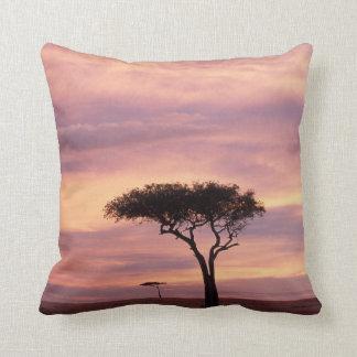Silhouette image of acacia tree at sunrise cushion