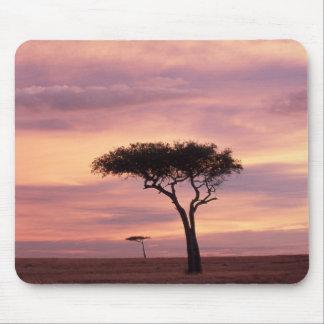 Silhouette image of acacia tree at sunrise mouse mat