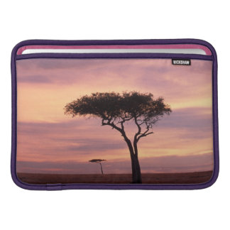 Silhouette image of acacia tree at sunrise sleeve for MacBook air