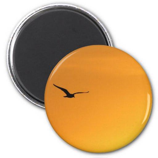 Silhouette of a Bird Magnet