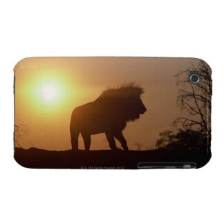 Silhouette of a lion iPhone 3 Case-Mate case