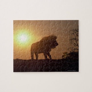 Silhouette of a lion jigsaw puzzle