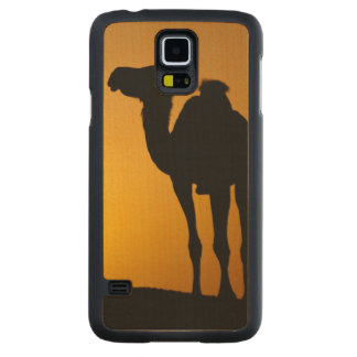 Silhouette of a wild camel at sunset carved maple galaxy s5 case
