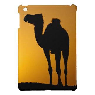 Silhouette of a wild camel at sunset cover for the iPad mini