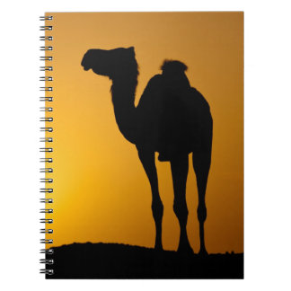 Silhouette of a wild camel at sunset notebook