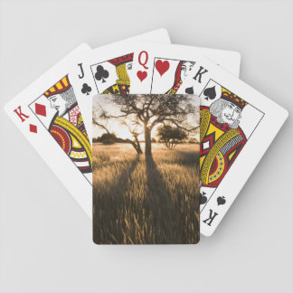 Silhouette Of Acacia Trees In Grass. Mariental Playing Cards