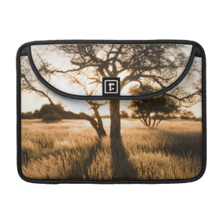 Silhouette Of Acacia Trees In Grass. Mariental Sleeves For MacBooks