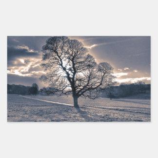 Silhouette of an old Oak tree Rectangular Sticker