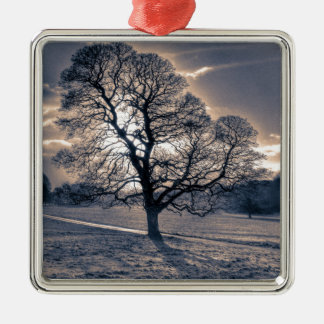 Silhouette of an old Oak tree Silver-Colored Square Decoration