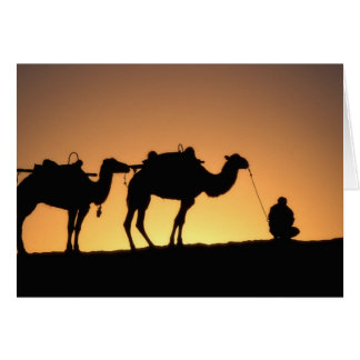 Silhouette of camel caravan on the desert at 2 card