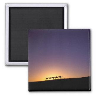 Silhouette of camel caravan on the desert at square magnet