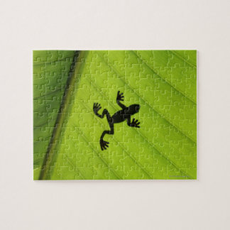 Silhouette of frog through banana leaf jigsaw puzzle