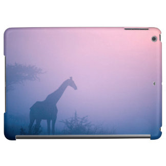 Silhouette Of Giraffe (Giraffa Camelopardalis)