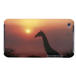 Silhouette of Giraffe (Giraffa Camelopardalis) iPod Case-Mate Cases