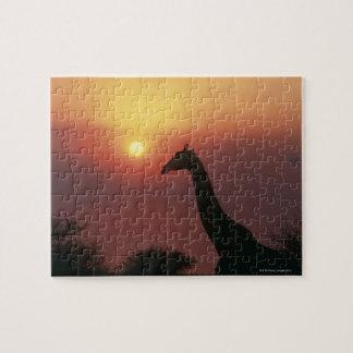 Silhouette of Giraffe (Giraffa Camelopardalis) Jigsaw Puzzle