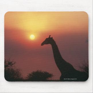 Silhouette of Giraffe (Giraffa Camelopardalis) Mouse Mat