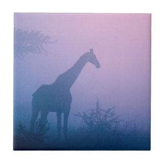 Silhouette Of Giraffe (Giraffa Camelopardalis) Tile