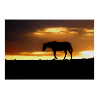 Silhouette of Horse at Sunrise Poster